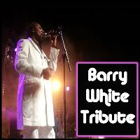 valentines party with the barry white tribute act