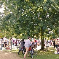 Milton Country Park Autumn Festival
