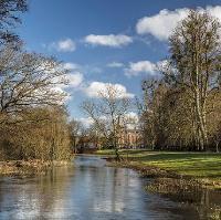 Walk for Parkinson's - Welford Park, Berkshire