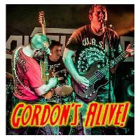 Gordons Alive - Original Live Music also top notch Covers
