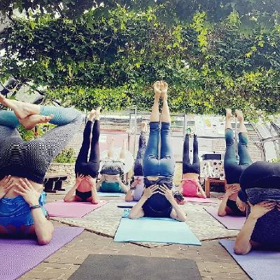 Organically-heated warm Yoga inside a listed glasshouse filled with flowers & birdsong. 'London's most unique urban retreat'... Connect with nature this summer!