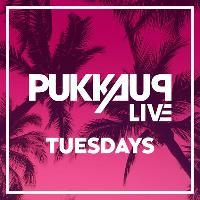 Pukka Up Ibiza Tuesdays
