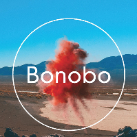 Bonobo (live)