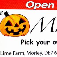 Pick your own Pumpkin with Mr Pumpkin