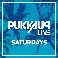 Pukka Up Ibiza Saturdays
