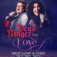 dead ringer for love