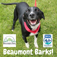 Beaumont Barks 2019