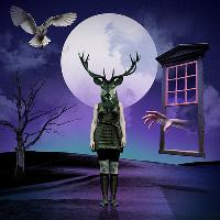 Portal Halloween Daytime