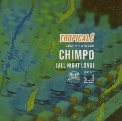 Foundations x Tropicale: Chimpo (All Night Long) | Patterns