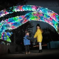 CHRISTMAS LIGHTS WITH A DIFFERENCE AT EDINBURGH ZOO'S  GIANT LAN
