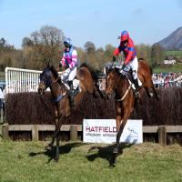 Eyton Races Point to Point