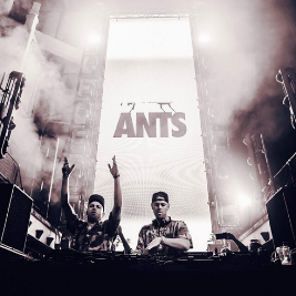 Reviews: ants | Printworks London London  | Sat 29th February 2020