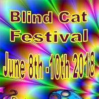 Blind Cat 4