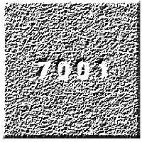 19/7001 Festival
