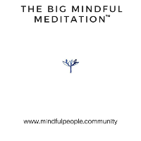 The Big Mindful Meditation™
