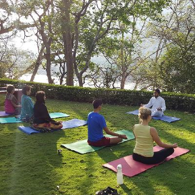 We offer residential 300 hour yoga teacher training in a peaceful and natural place in Rajaji National Park, Rishikesh