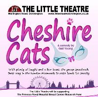 Cheshire Cats' by Gail Young