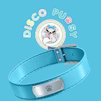 Disco Pussy