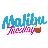 MALIBU TUESDAY