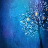 Stockwood Illuminated