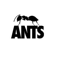 Ants Pre-Season Warm-Up