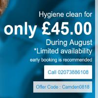 Dental Hygiene Offrer in Camden Town
