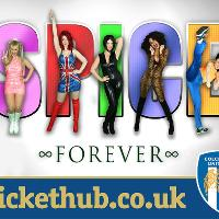 Spice Girls Tribute Night