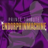 Prince Tribute Endorphinmachine
