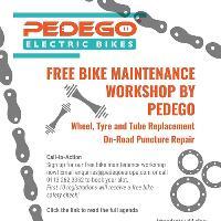 Free Bike Maintenance Workshop by Pedego Electric Bikes