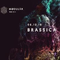 Modular Series 1 w/ Brassica (Feel My Bicep) Sat 6th Oct