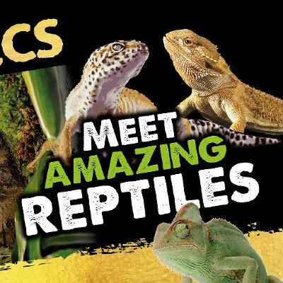 The Aztecs: Meet the Reptiles