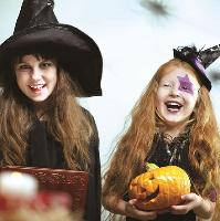 Wild Families - Room on the Broom - 2.00pm - 4.00pm session