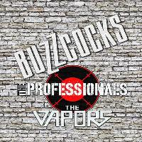 Buzzcocks / the Professionals (ex Sex Pistols) / the Vapors