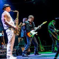 The Boss UK - Bruce Springsteen & E Street band tribute