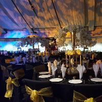Peepul Enterprise Wedding Fair